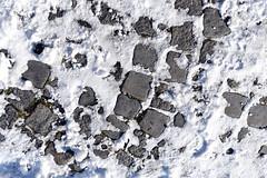D750Nikon MAN_4789 (sevengoals) Tags: d750nikon digital nikon nikkor snow street stone pavestones