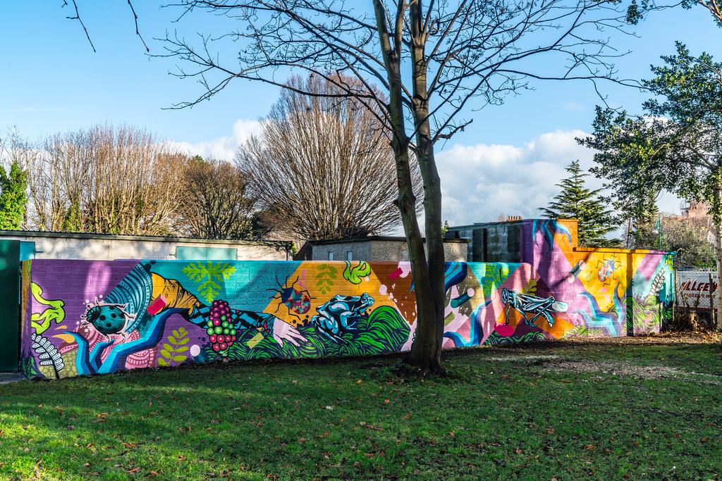 NEW STREET ART AND NEW TEAROOMS [HERBERT PARK DUBLIN]-124061