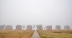 Fort Hancock - Abandoned Quarters (Firoz Ansari) Tags: nj newjersey forthancock highlands fog foggy house outdoor