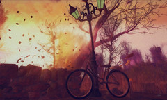 A windy afternoon (Asi Amorosi ~ Thanks all for your love and supp) Tags: wind windy afternoon bicycle autumn winter sl seconldife secondlifeart photoshop digitalart canvas painting peinture