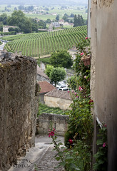 Saint-Émilion, France (4) (KJD Dale) Tags: gironde saintémilion winery cobblestone unesco