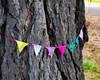 Bark and Bunting (Steve Taylor (Photography)) Tags: bark tree bunting art digital grass trunk texture newzealand nz southisland canterbury christchurch newbrighton