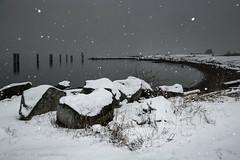 Snowfall (iPhilFlash) Tags: vancouver beach landscape winter rocks britishcolumbia garrypointpark nature steveston canada outdoors richmond outdoor snow ca