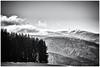 A frosty Morning... (Ody on the mount) Tags: anlässe berge feldberg kälte schnee schwarzwald urlaub winter bw monochrome sw sanktpeter badenwürttemberg deutschland de