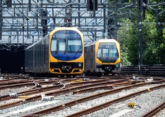 Sydney Trains - Oscar H22 and Millennium Set M23-M13 coming and going at Central (john cowper) Tags: millenniumset oscar h22 m23 m13 centralrailwaystation sydneytrains suburbanrailways sydney newsouthwales