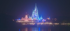 Foggy nights and Cinderella Castle dream lights! (andrew_carter091) Tags: disneyphotography disneyside disneyphotographer disneycastle disneyattraction disney waltdisney disneyparks waltdisneyworldresort disneyaddict disneyworld waltdisneyworld magickingdom mainstreetusa trainstation cinderella cinderellacastle dreamlights winter ice snow fog foggy water reflection mykissimmee professionalphotographer photo photographer photography nikon nikond3300