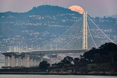Supermoon (alittlegordie) Tags: fullmoon moon supermoon bayarea baybridge bridge alignment landscape nature moonrise