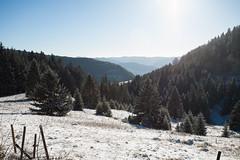 Schwarzwald (Ignatius Wahn) Tags: todtnau badenwürttemberg deutschland
