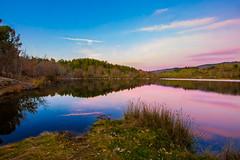 By the river II (Artur Tomaz Photography) Tags: barragemdadama penedono beselga blue dam purple river sunset tree water winter ao ar livre serenidade planta árvore céu água pôrdosol lago paisagem entardecer