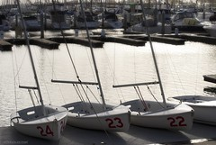 Twenty-two, twenty-three and twenty-four.... (Joe Hengel) Tags: danapoint danapointharbor socal southerncalifornia sea harbor pacificocean sailboat sailboats dock boats boat boatdock boardwalk theoc california ca orangecounty oc outdoor ocean goldenstate