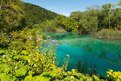 Parc National des lacs de Plitvice (trekmaniac-is-back) Tags: croatie ete2016 plitvice