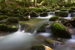 Dans les bois (Patatitphoto) Tags: de la 1740l arige ruisseau poselongue nd110 courbire