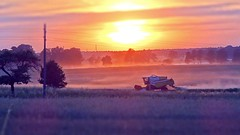 Harvest impression (radimersky) Tags: sunset rural landscape countryside miniature haze europa europe sony harvest poland polska cybershot impression harvester miniatura panoram landscap widok zachd soca tiltshift krajobraz wie 1920x1080 kombajn wiejski impresja niwa tiltshiftmaker dschx9v