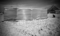 (Jack_from_Paris) Tags: l2000352bw leica m type 240 10770 leicasummicronm35mmf2asph 11879 dng mode lightroom capture nx2 rangefinder télémétrique bw noiretblanc monochrom wide angle le touquet paris plage sea soleil sun vent wind pare stripes rayures sable