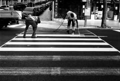 Men's... at Work. (Ninoo Vita) Tags: nikonf100 nikkor11850mmseriesepancake fujiacros100 fuji acros nikon nikkor pancake 50mm rodinal epsonv750 epson neopan men working lisbon lisboa alvalade zebrascrossing street streetphotography streetphotographymagazine black • darkened dim dingy drab gloomy misty murky overcast shadowy somber emozioniinbiancoeneroemotionsinblackandwhite schwarzweiss schwarz weis white photography nocolor blackwhitepassionaward lightsandshadows lights shadows yourperspectiveandcreative inspirationalphotography monochromia ishootfilm blackwhitephotos contrast