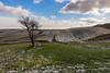 Albero e nuvole (Luca Maresca) Tags: alberi casalnuovo gennaio monti neve subappennino daunia paesaggi landscape nuvole blu