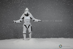 12/365 It's Snowing ([inFocus]) Tags: canon 5d 5dmkiv 2470mmf28lii 2470mm dave strobist starwars studio stormtrooper action actionfigure plastic toys toy creative snow 365 3652017 project365 photoaday tabletop flour