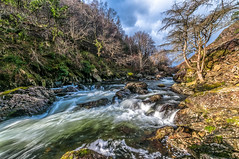 Running wild... (Lee~Harris) Tags: river flow power nature tree trees water longexposure motion flowing landscape wales rock light rugged uk beauty love naturephotography landscapephotography nikon nikond300 waterfall creek stream outdoor watercourse mountainside