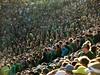 Oregon 32 (ajcgn) Tags: autzen stadium oregon ducks utah utes ncaa football