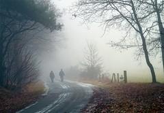 See Trough (metsemakers) Tags: mist nature fog leudal morning winter nebel outdoor sony alpha frost frozen landscape landschap street road speckerweg haelen zondag sunday sonntag wandelen walk wandern dimanche hike brouillard marcher hiver