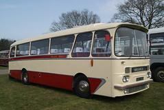 ABO 145B (Gricerman) Tags: abo145b westernwelsh aec aecreliance detling southeastbusfestival