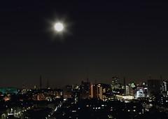 Winter Full Moon (seiji2012) Tags: 夜景 月 満月 国立市 fullmoon moon kunitachi light