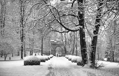 Snowy Entrance (JTrojer) Tags: ambras luigenstrasse trojer schlossambras winter tirol innsbruck austria tyrol outdoors alps sonya7r jtrojercom alpen snow