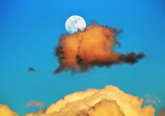 Full moon and then some (Artist Victoria Watson) Tags: moon colors sky clouds unusual fullmoon sunset oddclouds nature surreal