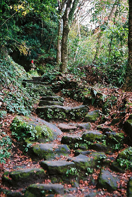 Old stone steps.