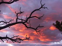 Grand Canyon Twilight 2 (MeckiMac) Tags: travel sunset usa clouds ilovenature twilight grandcanyon
