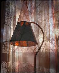 (Pantalon) Tags: lamp photoshop doubleexposure fotolog home