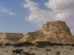 Oman canyon