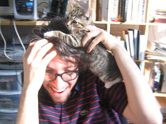 Kitten attacks Judd (finn) Tags: kitten proto snowhorse judd thedailykitten