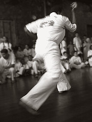 The Sporting Art of Capoeira - IX (carf) Tags: girls brazil bw art boys sport brasil kids children hope dance kid community capoeira child hummingbird traditions esperana social skills folklore philosophy martialarts capoeirabeijaflor beijaflor ecbf