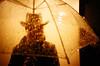 mysterious man (lomokev) Tags: orange black topf25 silhouette japan tokyo lomo lca lomography kyoto lomolca mysterious ran lomograph unberella libraryofhell submittedtojpg file:name=cd3619 use:on=moo