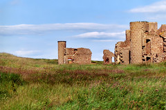 Slains Castle - by Diana K