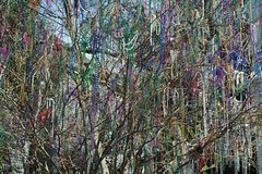 Bead Tree - by robholland