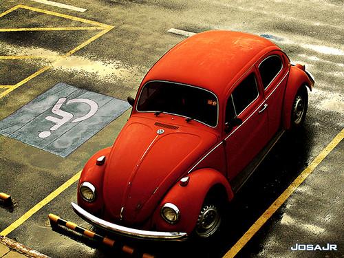 Hitler đã yêu cầu Volkswagen sản xuất ra con bọ Beetle như thế nào?