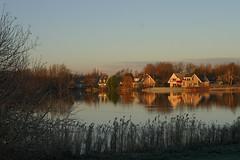 lake mirror (dirk huijssoon) Tags: holland op polder broek northholland westfriesland broekoplangedijk langendijk broekoplangendijk