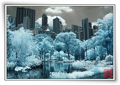 Infrared@Hong Kong Park (hk_traveller) Tags: park trip travel trees vacation bw white black canon wow ir hongkong 1 photo interestingness interesting flickr interestingness1 traveller hong kong explore turbo infrared g1 top100 top10  topten canong1 r72 douban  top500 fivestars top1 i500 view1000 turbophoto p1f1