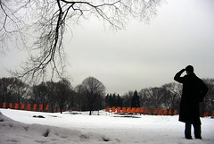 The Gates: Searching For Nachosan Revisited (LarimdaME) Tags: nyc winter snow centralpark saffron thegates nachosan shakingmyfist eastmeadow genegesture