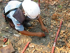 Mine clearing, Cambodia
