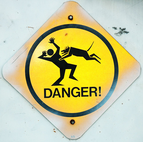 Caution: Low Flying Dogs. Photo by Mark Strozier on Flickr