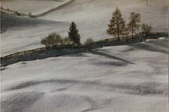 Snow (josef.stuefer) Tags: trees winter wallpaper italy snow nature rural fence landscape outdoors countryside scenery soft background silence idyllic altoadige bz sarntal sudtirol josefstuefer sarentino