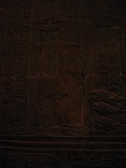 Hieroglyphics (midnightsoleil) Tags: egypt temple hieroglyphics