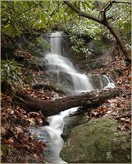 Ann's Falls I