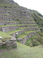Terracing at Machu Picchu