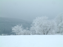 Landscape (Jenny!) Tags: blue winter white snow germany landscape 100v10f sauerland winterberg