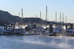 Statter Harbor Frozen Mist 3379 (Gillfoto) Tags: aukebay harbor alaska juneau boats winter mist fog cold statterharbor
