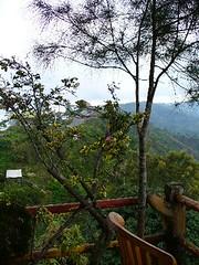 The outdoor eating area (royalwin) Tags: bali kintamani